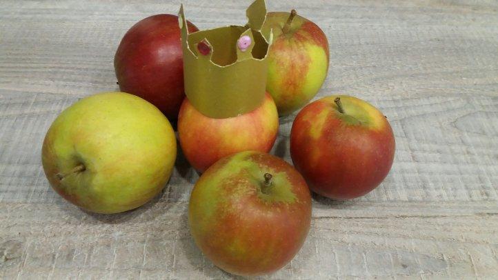 Apfelkönig Elstar