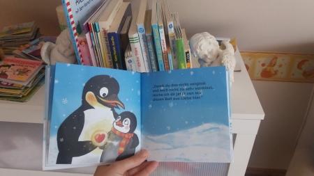 Flim Pinguin Buch