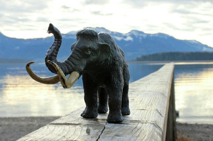Mammutmuseum Chiemsee mit BestFewo