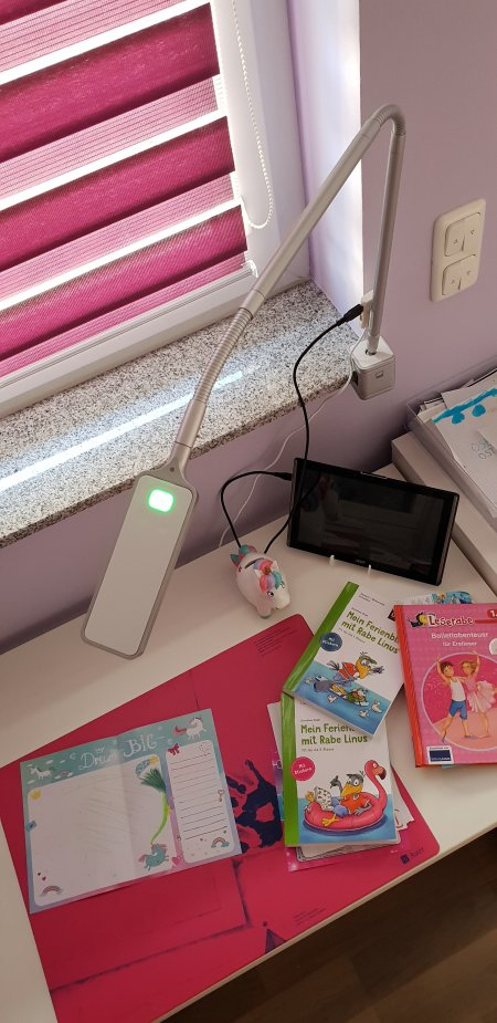 Flexlight Schreibtischlampe von Moll