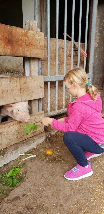 Familienhotel Hintertuxerhof Tiere besuchen