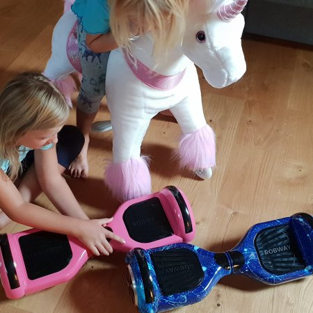 Robway Hoverboards und Ponycycle